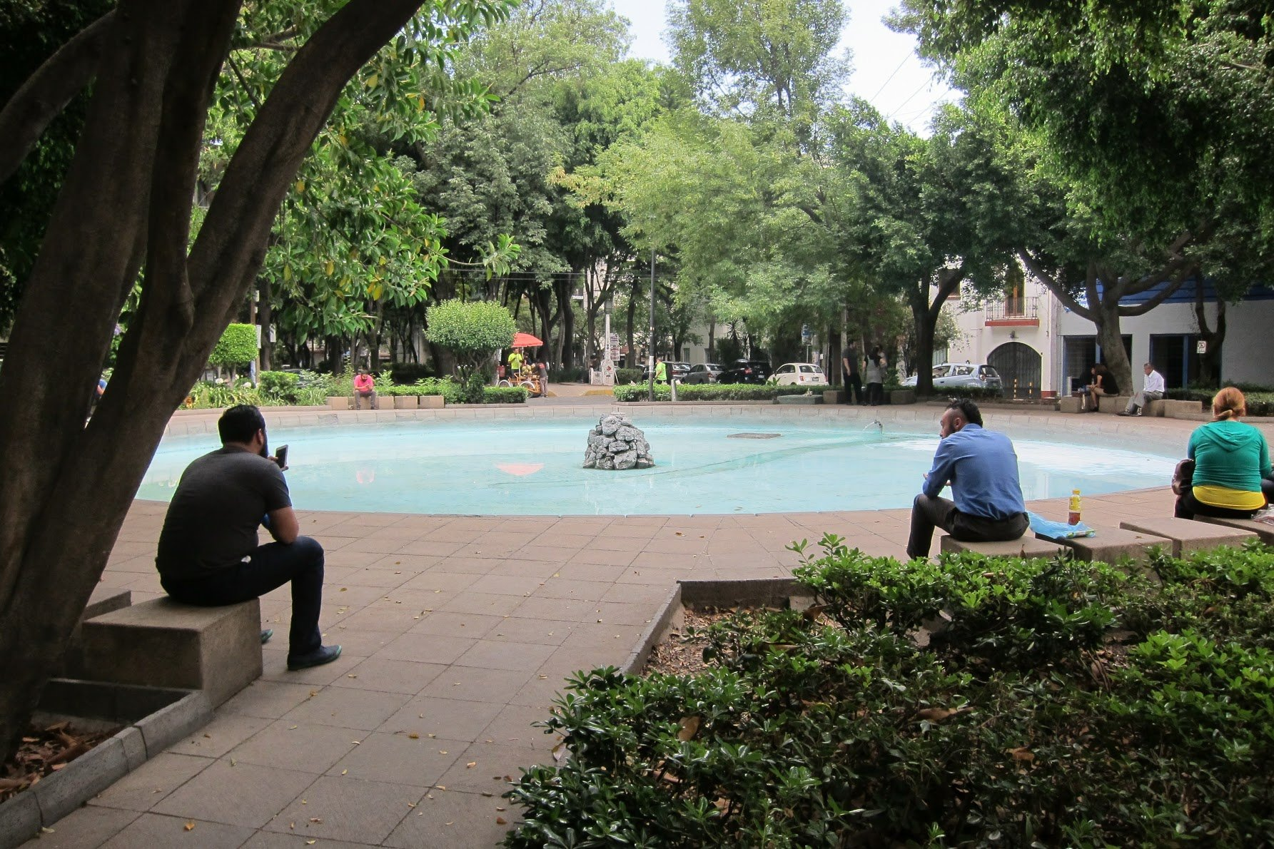 A chill afternoon in Condesa.